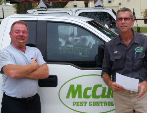 WDO Inspections by McCue Pest Control